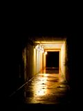 Wet tunnel. A damp wet tunnel through the darkness Royalty Free Stock Photo