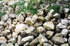 Wet various stones, grass, winter landscape in Italy Stock Images