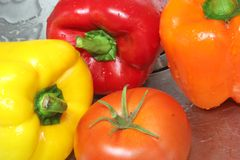 Wet Vegetables 1 Stock Images