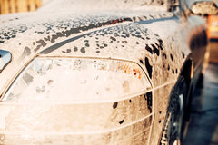 Wet vehicle in foam, automobile in suds, car wash. Carwash station Stock Photography
