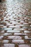 Wet vintage cobblestone road Stock Images