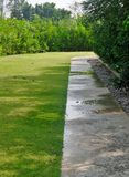 Wet walking path and fresh green grass lawn Royalty Free Stock Image