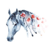 Wet watercolor horse head with red flowers in mane. Royalty Free Stock Photo