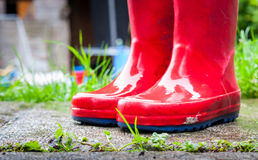 Wet wellies. A pair of wet red children's wellies outside in a garden in the rain Stock Photography