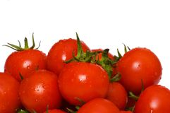 Wet whole tomatos isolated. Wet whole tomatos arranged isolated on white Royalty Free Stock Images