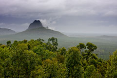 Wet Wilderness. Scenes of nature: Sun shower on a stormy day in Australia's East cost wilderness hinterland Stock Images