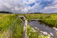 Wet Wildlife crossing culvert underpass with gangplank. Wet Wildlife crossing culvert pipe underpass for animals with gangplank under a highway in the Royalty Free Stock Image