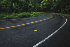 Wet winding road Stock Photography