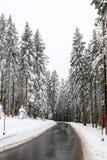 Wet winter road Stock Image