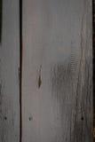 Wet wood floors Stock Images