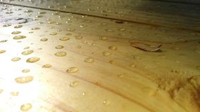 Wet wood 2.0 stock image