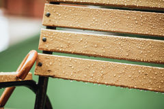 Wet Wooden Bench Royalty Free Stock Photo