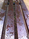 Wet wooden bench with drops Stock Image
