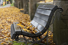 Wet wooden bench Stock Photography