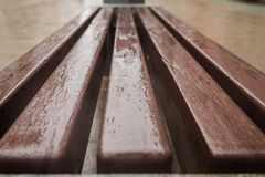 Wet wooden bench Stock Images