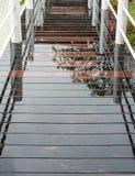 Wet wooden bridge Stock Image