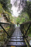 Wet wooden footbridge crossing gorge Stock Photos