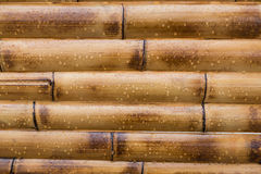 Wet yellow bamboo background Royalty Free Stock Images