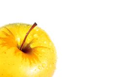 Wet yellow delicious apple with space for text Royalty Free Stock Images
