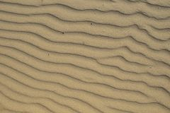 Wet sand on the Baltic Sea stock photo