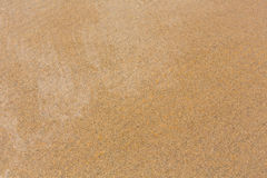 Wet yellow sand background. Royalty Free Stock Images