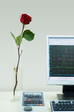 Wetenschap tegenover Aard. Stock Fotografie