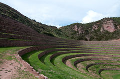 Wetenschap van Incas in Landbouw Royalty-vrije Stock Afbeelding