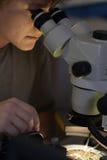 Wetenschappelijk onderzoeker die microchip met werkingsgebied bekijkt royalty-vrije stock foto