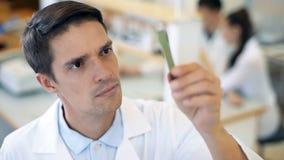 Wetenschapper die bij het laboratorium werkt stock footage