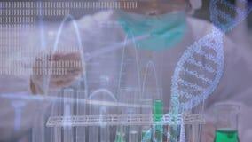 Wetenschapper die chemische producten bestuderen stock footage