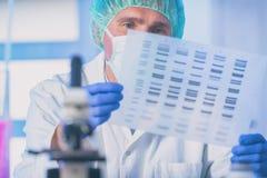 Wetenschapper die DNA-opeenvolging analizing stock afbeeldingen
