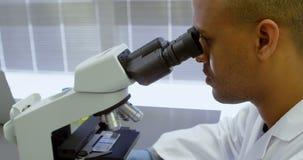 Wetenschapper die door microscoop 4k kijken stock videobeelden