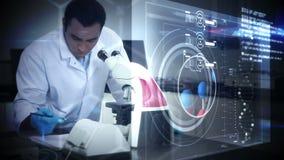 Wetenschapper die in een microscoop kijkt stock footage