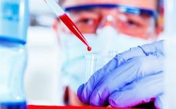 Wetenschapper die in laboratorium onderzoeken Stock Afbeeldingen