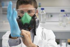 Wetenschapper In Gas Mask en het Zetten op Rubberhandschoen royalty-vrije stock afbeelding