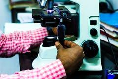 Wetenschapper het aanpassen knoppen van een lichte microscoop stock afbeelding