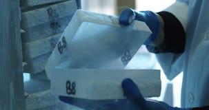 Wetenschapper het openen reageerbuisdoos van diepvriezer 4k stock video