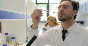 Wetenschapper Man Analyzing Plant die in Geneticalaboratorium werken met Groep Geneticionderzoekers stock footage