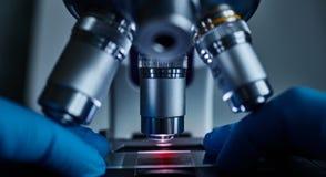 Wetenschapperhanden met microscoop royalty-vrije stock fotografie