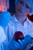 Wetenschappers bij botanisch laboratorium stock fotografie