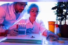 Wetenschappers bij botanisch laboratorium royalty-vrije stock afbeeldingen