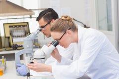 Wetenschappers die microscoop gebruiken Royalty-vrije Stock Afbeelding