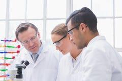Wetenschappers die samenwerken stock afbeeldingen