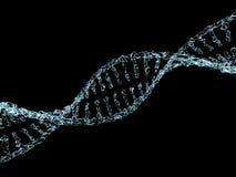 Wetenschapsachtergrond met DNA-molecules van water op zwarte 3d Stock Afbeelding
