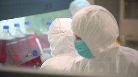 Wetenschapslaboratorium, virologie medische wetenschapper die, de bioloog van de technicusarbeiders van de onderzoekersviroloog i stock video