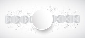 Wetenschapsmalplaatje, behang of banner met een 3D DNA-molecules Royalty-vrije Stock Foto