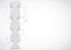 Wetenschapsmalplaatje, behang of banner met een 3D DNA-molecules Royalty-vrije Stock Afbeeldingen