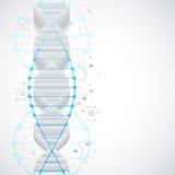 Wetenschapsmalplaatje, behang of banner met een 3D DNA-molecules Royalty-vrije Stock Afbeelding