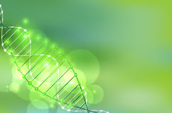 Wetenschapsmalplaatje, groene behang of banner met een DNA-molecules royalty-vrije illustratie
