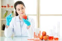 Wetenschapsonderzoeker die een GMO-installatie steunen Stock Fotografie